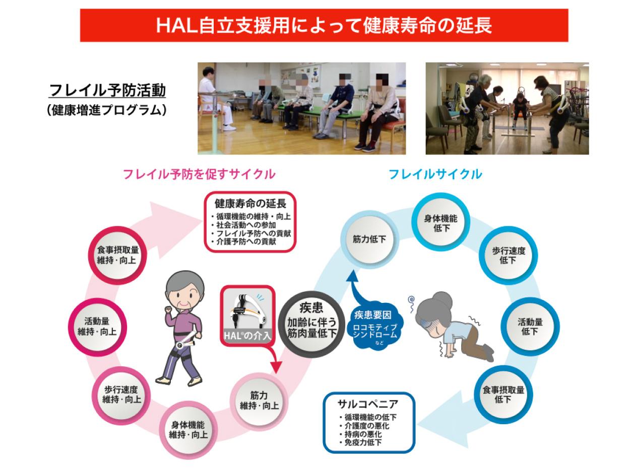 HAL自立支援用による健康寿命の延長。フレイル予防を促すサイクルで、循環機能の維持向上、社会活動への参加に寄与し、サルコペニアを予防します。
